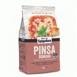 Olive Bella Cerignola busta...